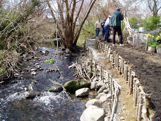 Montieth Allotment Gardens on Bowker Creek