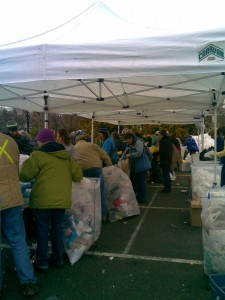 Volunteers sorting plastics for recycling