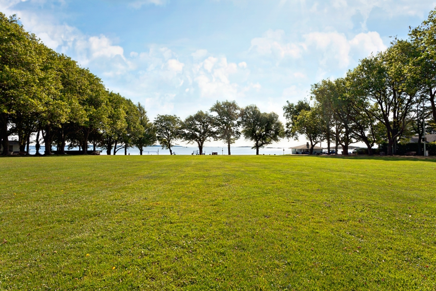 Oak-Bay-Willows-Beach-Field-e1410455920192
