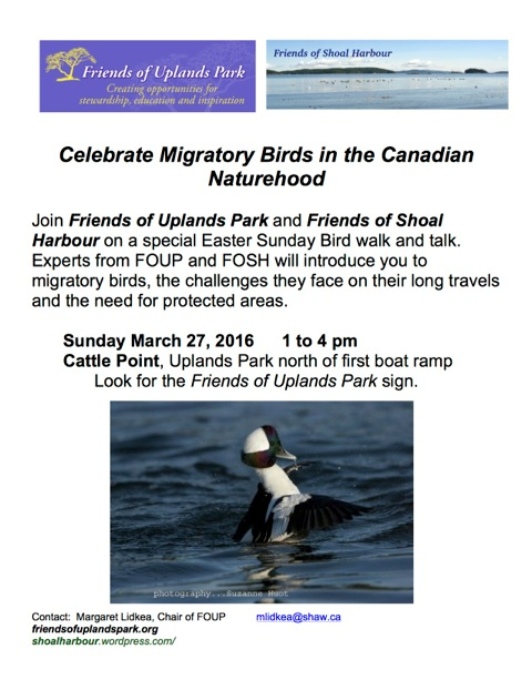 2016 Mar27 poster Celebrate Mirgratory Birds in the Naturehood