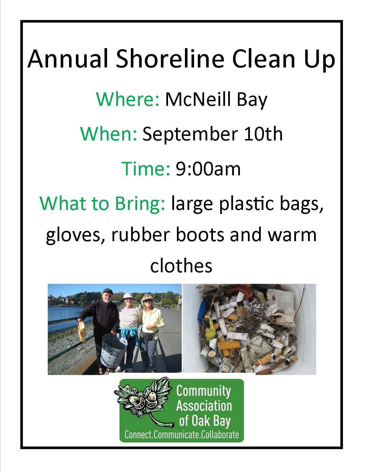 shoreline clean up